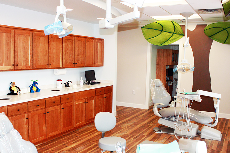Crozet Pediatric Dentistry Treatment Room